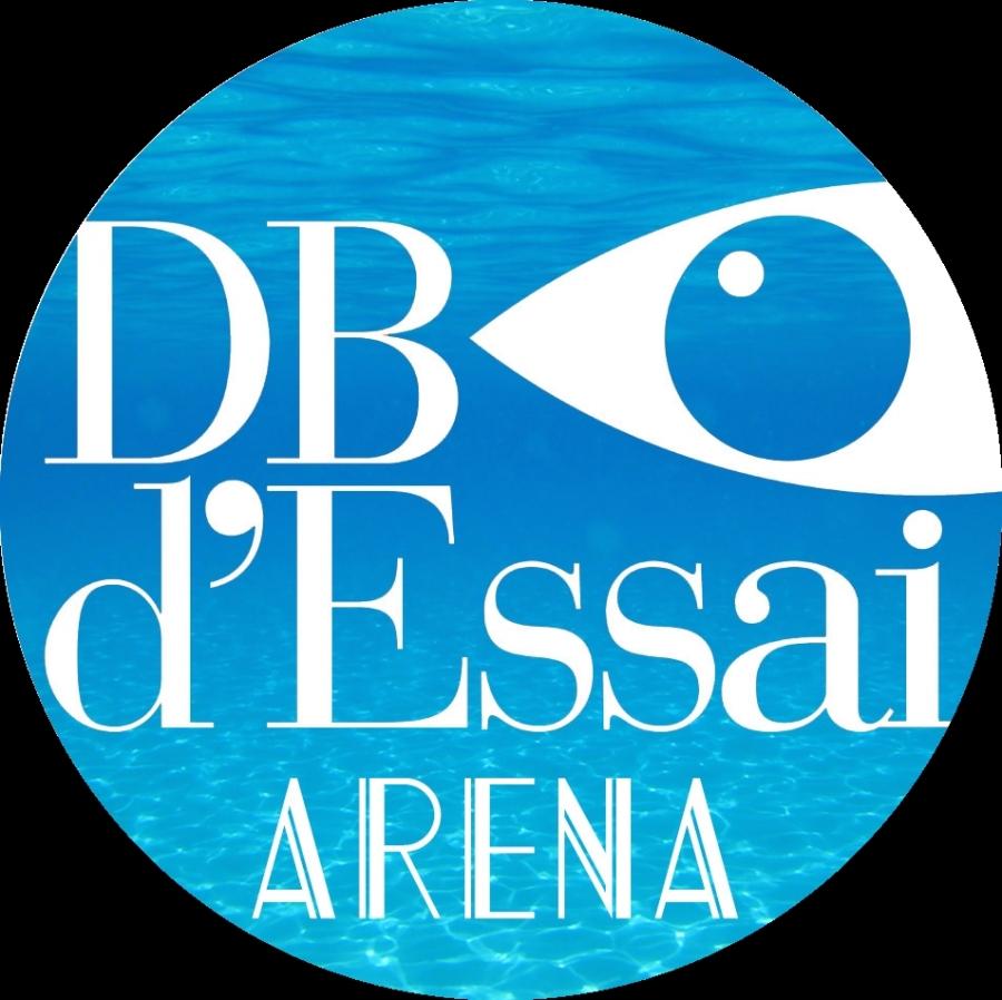 Logo DB Arena